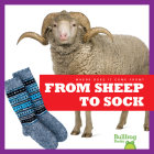 From Sheep to Sock (Where Does It Come From?) Cover Image