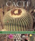 Cacti: An Illustrated Guide to Varieties, Cultivation and Care, with Step-By-Step Instructions and Over 160 Magnificent Photo Cover Image