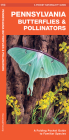 Pennsylvania Butterflies & Pollinators: A Folding Pocket Guide to Familiar Species Cover Image