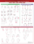 Travell, Simons & Simons' Trigger Point Pain Patterns Wall Chart: Head, Neck, and Upper Limb Cover Image