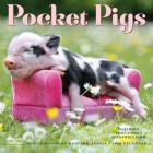 Pocket Pigs Wall Calendar 2019: The Famous Teacup Pigs of Pennywell Farm Cover Image