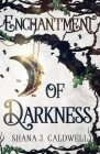 Enchantment of Darkness Cover Image