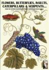 flowers, butterflies, insects, caterpillars & serpents...: From Sybilla Merian & Moses Hariss XVII-XVIII Centuries engravings (Darwin's View #2) Cover Image