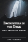 Encounters in the Dark: Identity Formation in the Jacob Story (Semeia Studies #96) Cover Image
