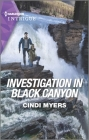 Investigation in Black Canyon Cover Image