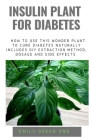 Insulin Plant for Diabetes: How to use this wonder plant to cure diabetes naturally includes DIY extraction method, dosage and side effects Cover Image