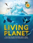 Living Planet: The Story of Survival on Planet Earth Cover Image