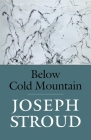Below Cold Mountain Cover Image