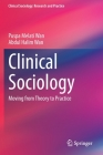 Clinical Sociology: Moving from Theory to Practice (Clinical Sociology: Research and Practice) Cover Image