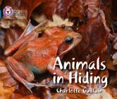 Animals in Hiding (Collins Big Cat) Cover Image