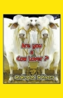 Are you a Cow Lover? Cover Image