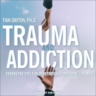 Trauma and Addiction Lib/E: Ending the Cycle of Pain Through Emotional Literacy Cover Image