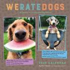 WeRateDogs 2020 Wall Calendar Cover Image