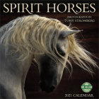 Spirit Horses 2021 Wall Calendar: Photographs by Tony Stromberg Cover Image