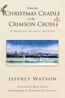 From the CHRISTMAS CRADLE to the CRIMSON CROSS: 20 Watercolors for Advent and Easter Cover Image