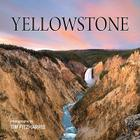 Yellowstone Cover Image