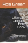 The Ultimate Jaguar Photo Book: Looking through the eyes of these 3rd largest of the big cats Cover Image