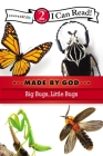 Big Bugs, Little Bugs: Level 2 (I Can Read! / Made by God) Cover Image
