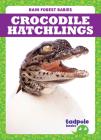 Crocodile Hatchlings Cover Image