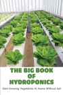 The Big Book Of Hydroponics: Start Growing Vegetables At Home Without Soil: Hydroponics System Books Cover Image