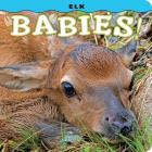 Elk Babies! Cover Image