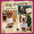 Dog Shaming 2020 Wall Calendar Cover Image