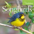 Audubon Sweet Songbirds Mini Wall Calendar 2020 Cover Image