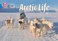 Arctic Life (Collins Big Cat) Cover Image