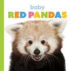 Baby Red Pandas (Starting Out) Cover Image
