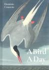 A Bird a Day Cover Image