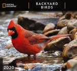 Cal 2020-National Geographic Backyard Birds Wall Cover Image