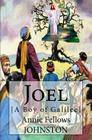 Joel: [A Boy of Galilee] Cover Image