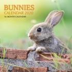 Bunnies Calendar 2020: 16 Month Calendar Cover Image