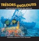 Trésors Engloutis: Les plus belles épaves des Antilles Cover Image