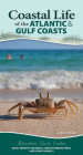 Coastal Life of the Atlantic and Gulf Coasts: Easily Identify Seashells, Beachcombing Finds, and Iconic Animals (Adventure Quick Guides) Cover Image
