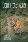 Down the Gully: A Meathead Book Cover Image