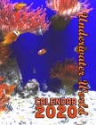 Underwater World Calendar 2020: 14 Month Desk Calendar Showing the Beauty of the Deep Cover Image