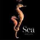 Sea Cover Image