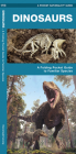 Dinosaurs, 2nd Edition: A Folding Pocket Guide to Familiar Species (Pocket Naturalist Guide) Cover Image