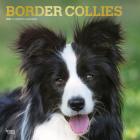Border Collies 2021 Square Foil Cover Image