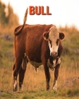 Bull: Incredible Pictures and Fun Facts about Bull Cover Image