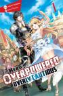 The Hero Is Overpowered but Overly Cautious, Vol. 1 (light novel) (The Hero Is Overpowered but Overly Cautious (light novel) #1) Cover Image