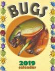 Bugs 2019 Calendar Cover Image