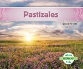 Pastizales (Grassland Biome) (Spanish Version) (Biomas (Biomes)) Cover Image