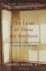 The Least of These My Brethren: A Doctor's Story of Hope and Miracles in an Inner-City AIDS Ward Cover Image
