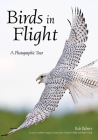 Birds in Flight: A Photographic Essay of Hawks, Ducks, Eagles, Owls, Hummingbirds, & More Cover Image