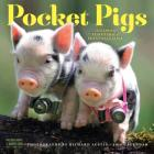 Pocket Pigs Wall Calendar 2018 Cover Image