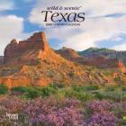 Texas Wild & Scenic 2020 Mini 7x7 Cover Image