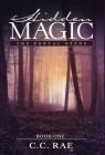 Hidden Magic: The Portal Opens Cover Image
