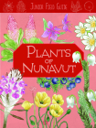 Junior Field Guide: Plants of Nunavut: English Edition Cover Image